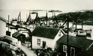 Foto Harbour2