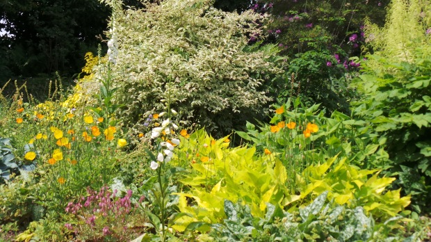 Captivating Beth Chatto Gardens – Annika Perry\'s Writing Blog