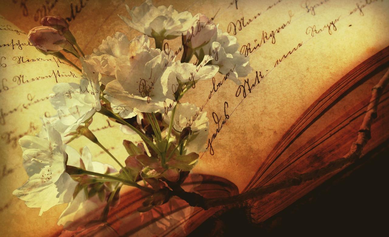 book-2808775_1280